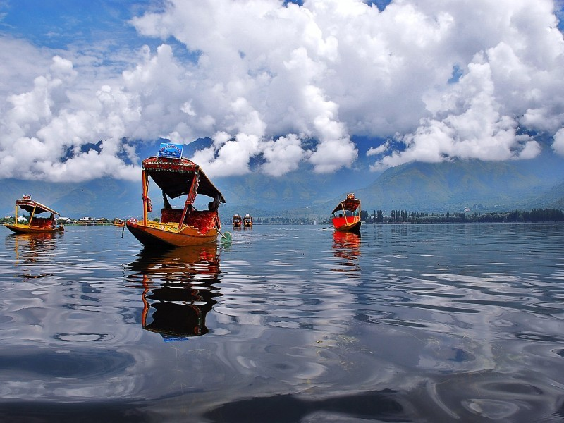 Shikaras on Dal Lake, Srinagar