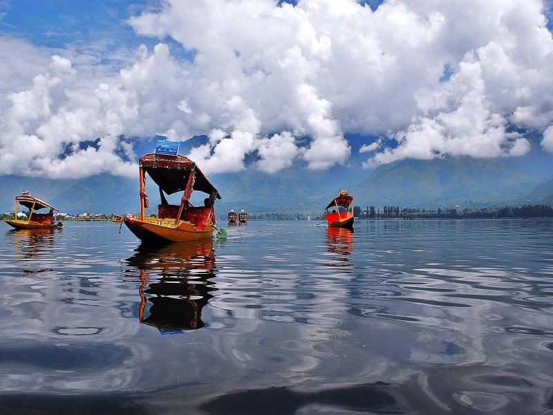 Shikaras on Dal Lake, Srinagar