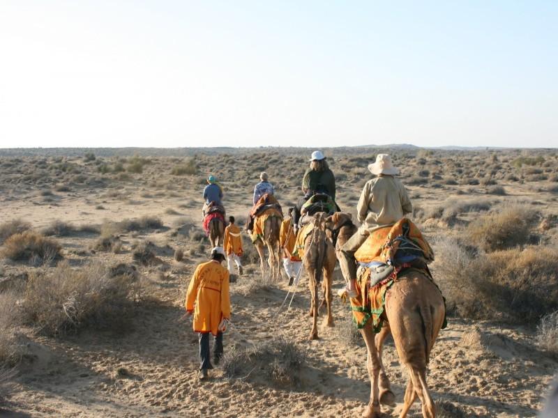 Camel Safari in Thar Desert