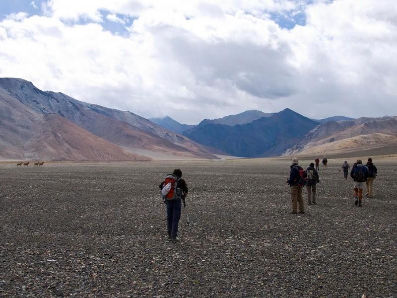 Rupshu Valley
