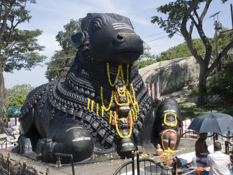 Nandi Sculpture, Chamundi Temple