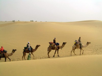Rajasthan Multi-Activity Adventure