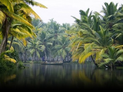 South India, Wildlife and Backwaters