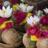 Coconut with flowers, Meenakshi temple