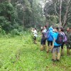 Jungle Walk, Periyar NP