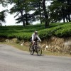 Cycling through tea plantations
