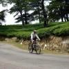 Cycling through tea plantations