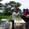 Local tea seller, garden fresh