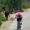 Cycling along country roads
