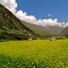 Sangla Valley Panorama